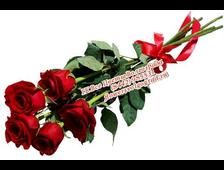 Пять Роз
