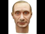 Голова ACI №22