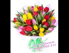 Букет 35 Тюльпанов Фиона (цвет по желанию)