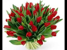 51/101 красный Тюльпан в букете Алый Альянс