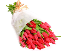 Тюльпаны красные букет Стандарт 27 штук