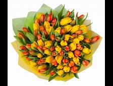 51 Желтый и красный Тюльпан