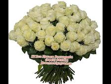 51/101/125/151/201 роза белая по акции