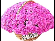 101 роза розовая Аква в корзине