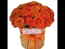 Оранжевые (21шт) розы в шляпной коробке