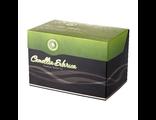 Фиточай «Camellia sibirica» с курильским чаем (Иммунный чай)