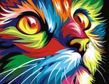 радужный кот 30х40