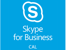 Microsoft Skype for Bussiness Server CAL RUS Lic/SAPk OLP C Government User CAL 7AH-00608