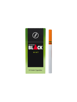 DJARUM BLACK MINT