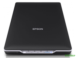 Сканер EPSON Perfection V19 [b11b231401]