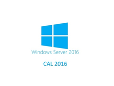 Microsoft Windows Rights Management Services CAL 2016 ENG OLP A Government  User CAL T98-02834