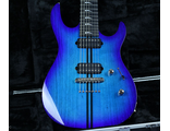 Kiesel \ Carvin USA Custom Shop