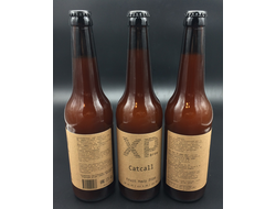 Фото Пива XP Brew CatCall Fruit Hazy DIPA Икс пи Брю КэтКолл Фрут Хэйзи ДИПА 8,3% IBU 40 0,5л (180)