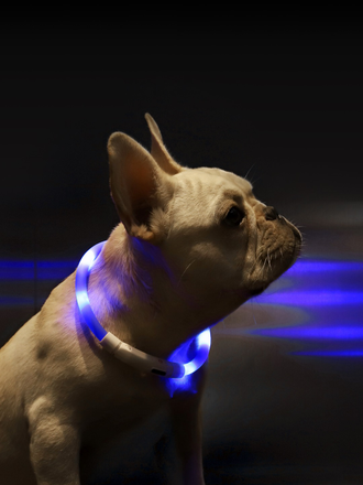 Ошейник светящийся Xiaomi Little Beast Star Pet Glowing Collar