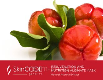 SkinCode genetic's REJUVENATION AND NUTRITION