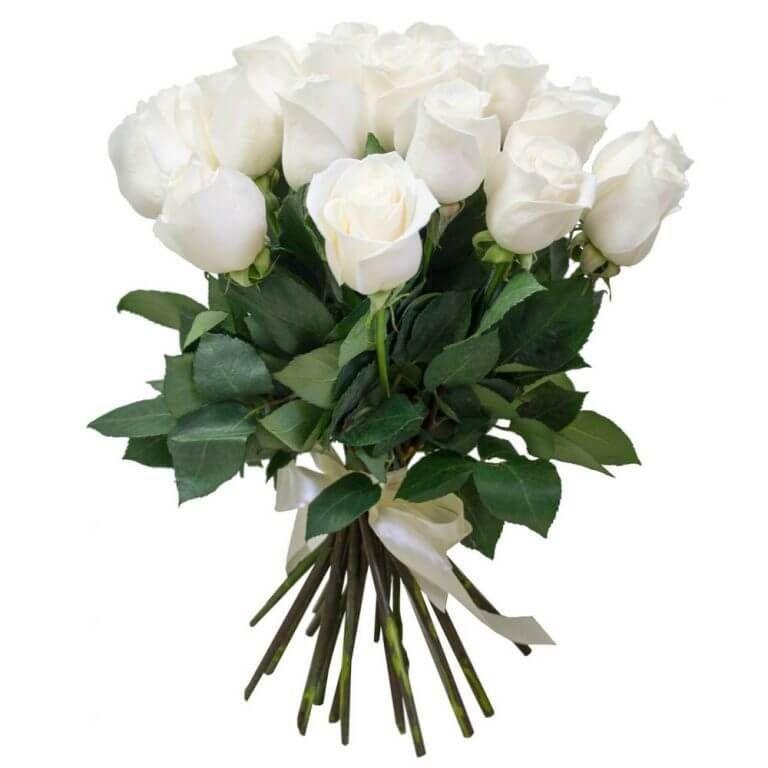 Купить белые розы