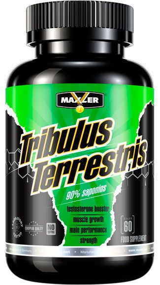 Tribulus Terrestris 1200 mg  (Maxler) 60 caps