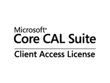 ПО Core CAL Client Microsoft Access License Sngl SA Open License W06-00008