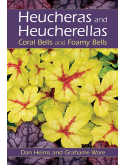 Heucheras and Heucherellas : Coral Bells and Foamy Bells