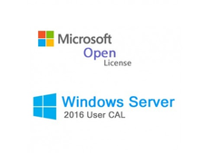 Microsoft Windows Rights Management Services CAL 2016 ENG OLP B Government User CAL T98-02835