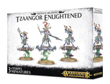 Warhammer AoS: Tzaangor Enlightened / Skyfires