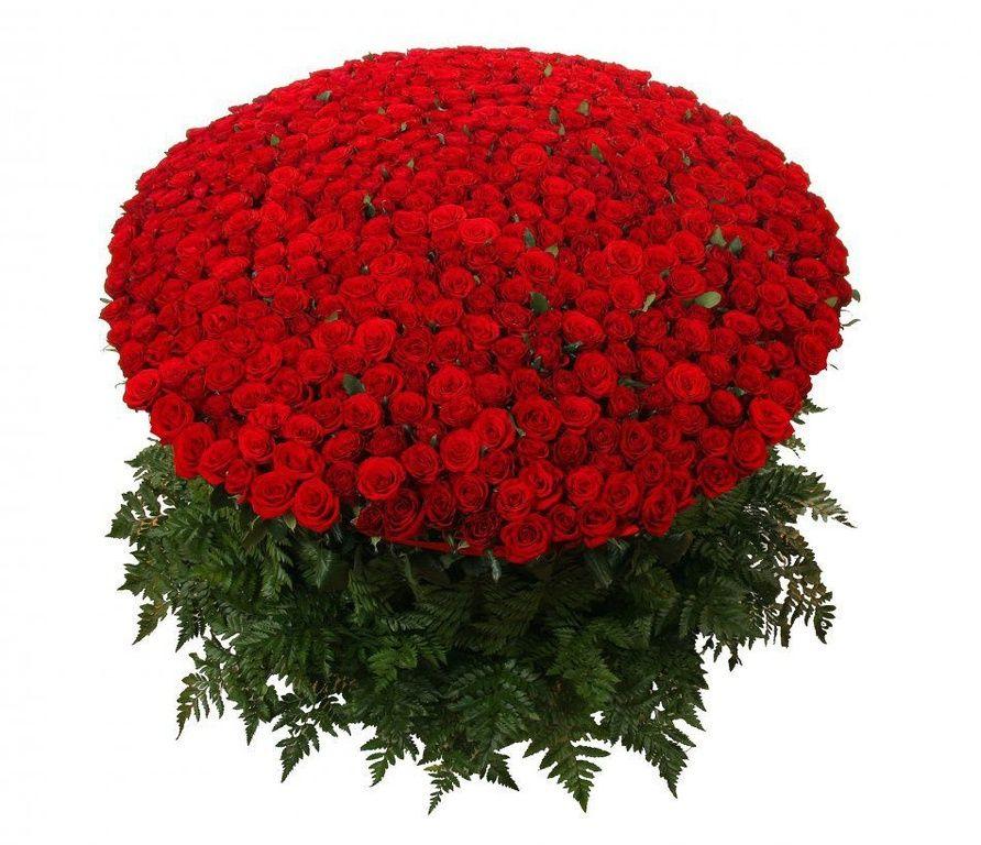 Цветы челябинске, цветы крым доставка роз