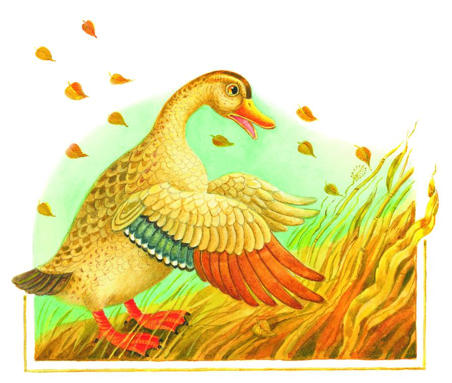 картинка утка из сказки диковинными названиями
