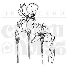 Штамп для раскрашивания Ирисы, бутоны и цветки