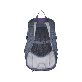 Рюкзак Husky Spiner 20L Purple