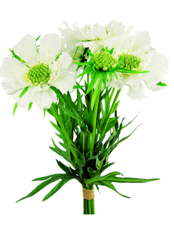 Букет  SIA SCABIOSA BUNDLE , 041179 ,