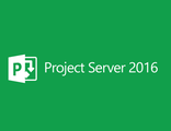 Microsoft Project Server 2016 SNGL OLP NL H22-02689