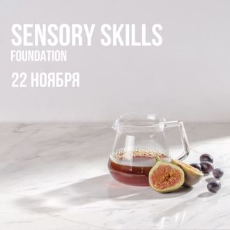 "Курс ""Sensory Skills Foundation"""
