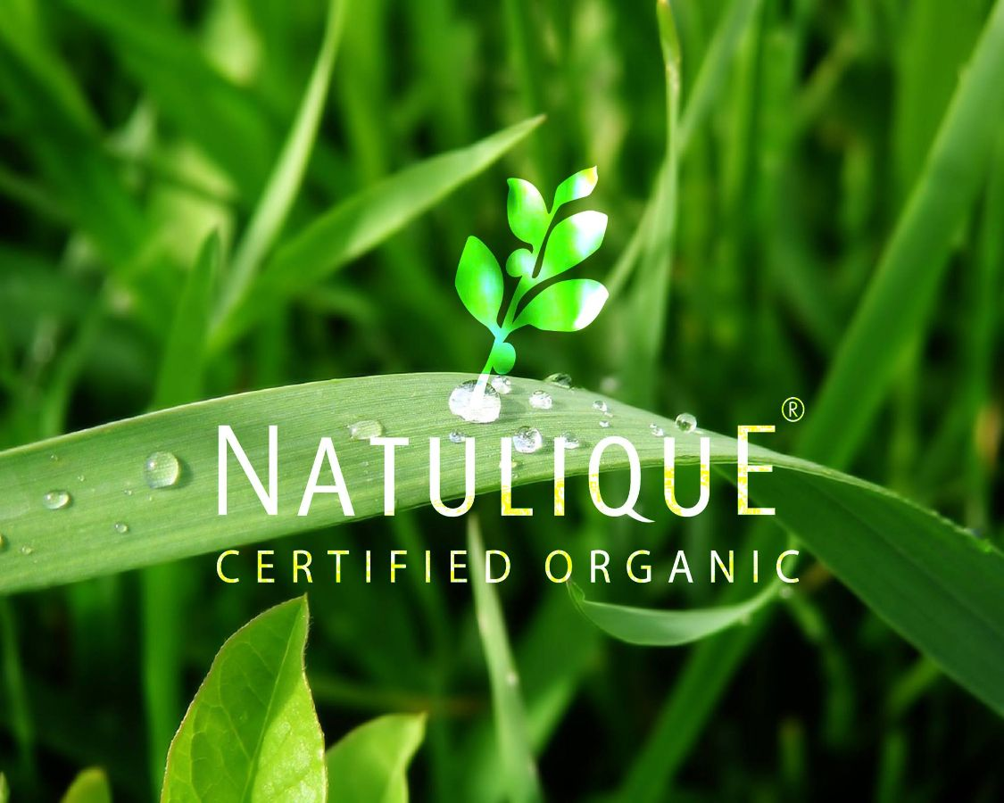 NATULIQUE certified organic. EcoCert. Shop DIAMOND BEAUTY. Kiev.