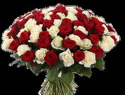 Букет из 101 розы Гран При и Аваланч