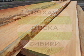 Siberian Larch unedged timber