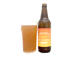 Пиво Chillinz Sun of a Beach Mosaic Summer Ale Светлое эль 4% 0,5л
