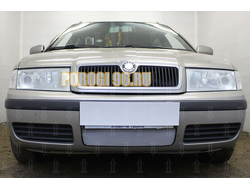 Защита радиатора Skoda Oktavia 2000-2011 chrome