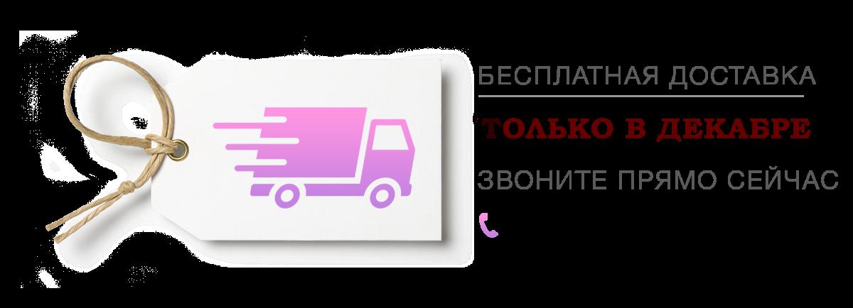бесплатная доставка в день заказа