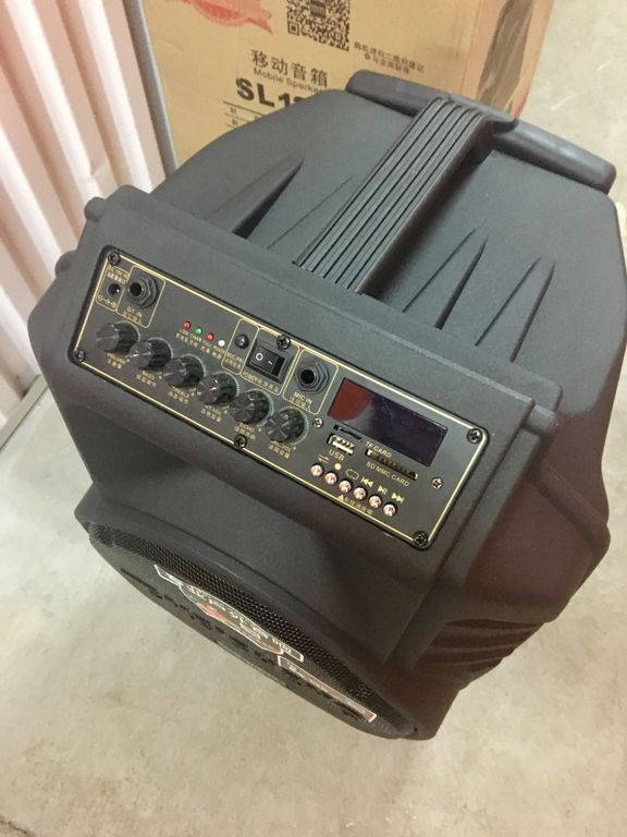 Комбоусилитель караоке Temeisheng Perfect Sound SL12-08