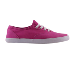 Кеды  DVS Girls Dawy Pink