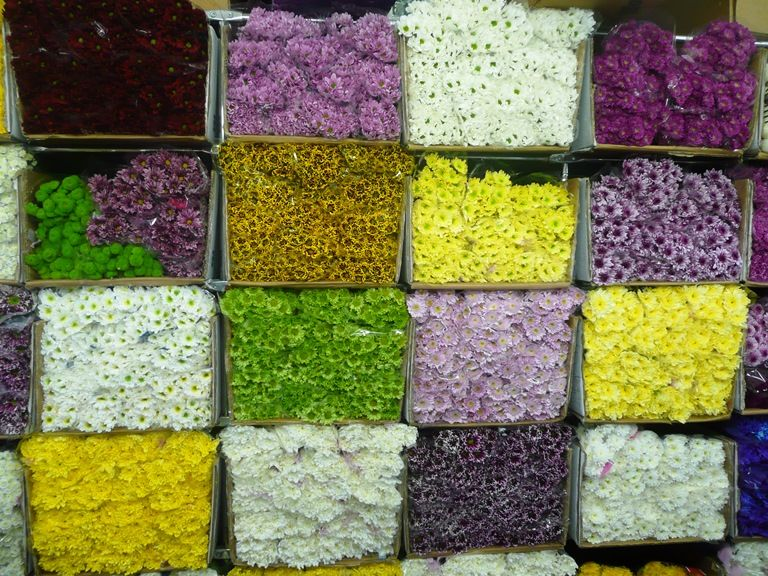 Оптом свежесрезанные цветы челябинск цены, цветы