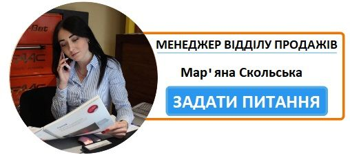 Ворота Ужгород, вул. Олександра Блистіва, 1