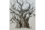 ___and_another_tree_by_paintedpeople.jpg