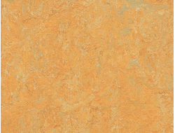 Натуральный Линолеум Мармолеум fresco 3847 golden saffron