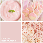 Sherwin-Williams: цвет месяца июль 2017 - SW 6316 Rosy Outlook