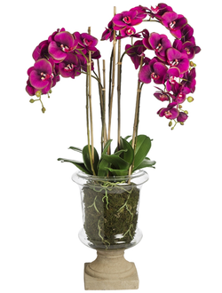Цветок в горшке  SIA MARYLIN ORCHID GLASS POT LARGE , 060250 ,