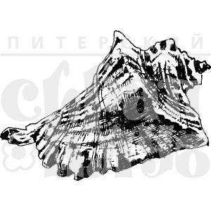 штамп с реалистичным изображением ракушки средней