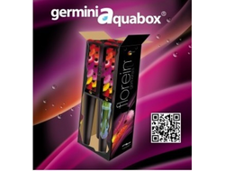 Germini aquabox mix