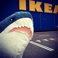 акула акула блохэй акула из икеа акула Ikea смешная акула акула