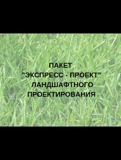 """Пакет """"Экспресс - проект"""" ландшафтного проектирования (СТОИМОСТЬ УКАЗАНА ЗА СОТКУ)"""